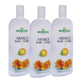 Wheezal Arnica Hair N Scalp Treatment (Pack Of 3),  Anti Hair Fall  200 Ml