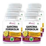 St.Botanica Garcinia Forskolin Extract (500 Mg) Pack Of 6,  90 Veggie Capsule(s)