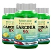 Morpheme Remedies Garcinia 9X (Pack of 3),  60 capsules