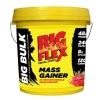 Big Flex Big Bulk Mass Gainer,  6.6 lb  Strawberry