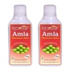 Zindagi Amla Juice, Natural (Pack of 2)