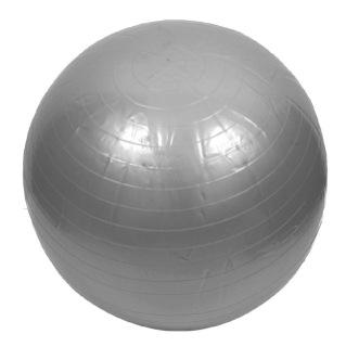 Lifeline Gym Ball for Healthy Life,  Silver  65 cm